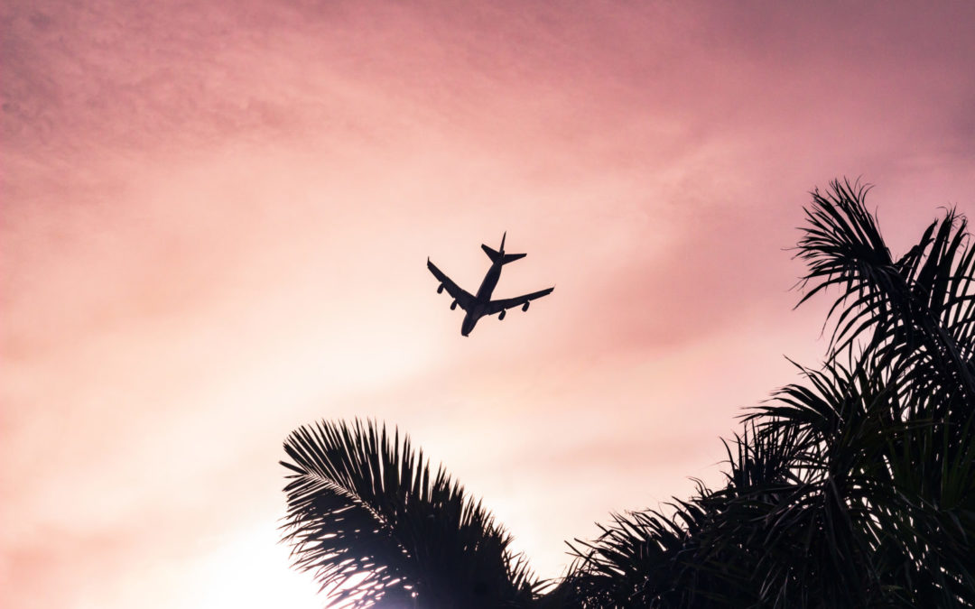 The travel economy is soaring again !
